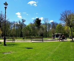 Park Miejski - prace porządkowe