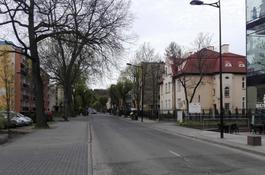 Ankieta dotycząca przebudowy ul. Hallera