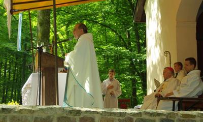 Odpust Uzdrowienia Chorych na Kalwarii Wejherowskliej - 4.07.2010