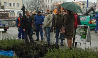 Udana akcja dziennikarzy, leśników i urzędników - 21.04.2012
