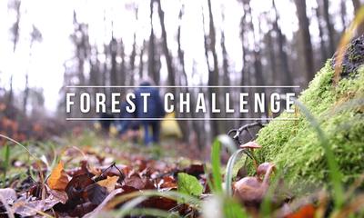 Forest Challenge 2020