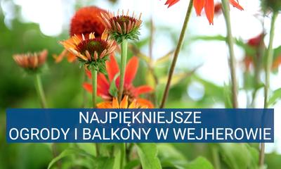 Konkurs na najpiękniejsze ogrody i balkony w Wejherowie