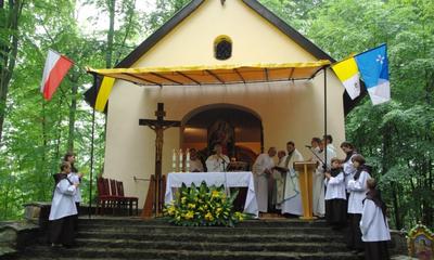 Odpust NMP Uzdrowienia Chorych - 01.07.2012