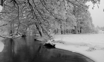 Okolice rzeki w Wejherowie - Grzegorz Chmiel
