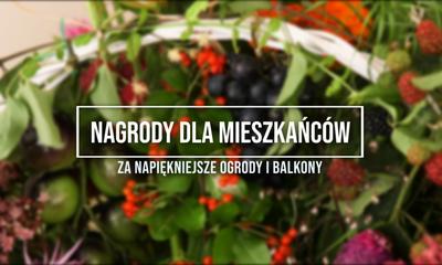 Nagrody dla mieszkańców za najpiękniejsze ogrody i balkony