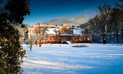 Zima w parku miejskim - 12.01.2012